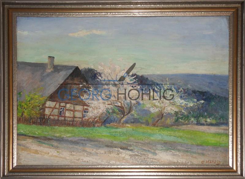 Gemälde Haus in Waschleithe von Georg Höhlig